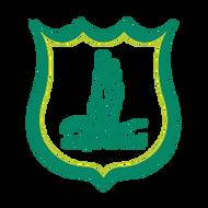 organisatie logo Jumpin' de Weel